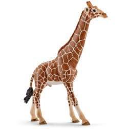 Figurina Schleich - Girafa. Mascul 14749