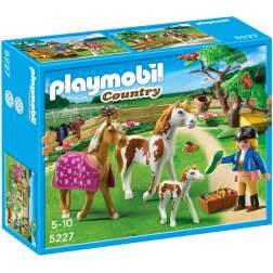 Playmobil Padoc Cu Cai (5227)