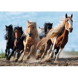 Puzzle Trefl - Galloping Horses, 1000 piese (10446)