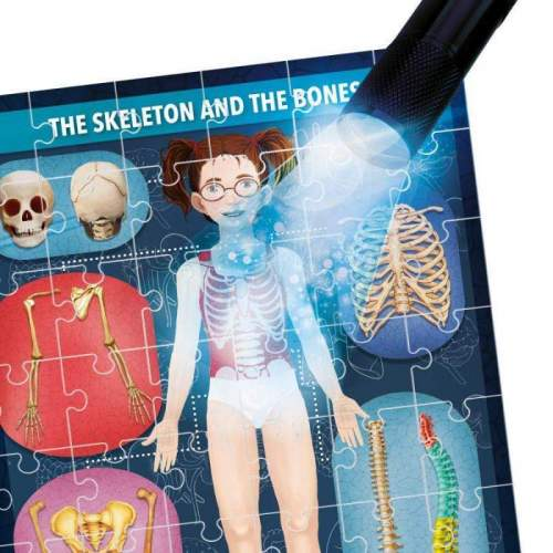 Puzzle Radiografia Corpului Uman