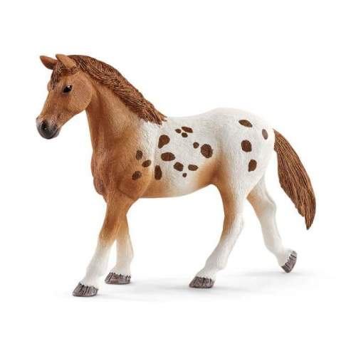 Set Schleich - Training Turneu si cal Appaloosa SL42433